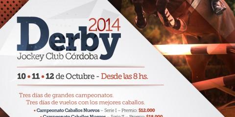 FlyerA3-Derby 2014-01-01-01