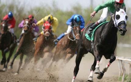 Jockey Club Córdoba - Turf