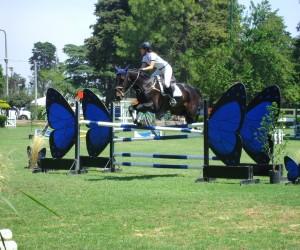 XIV Campeonato Federal saltos hípicos