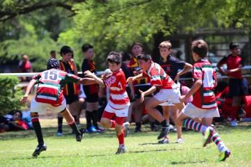 XII Encuentro Nacional de Rugby Infantil Luciano Carrara - Jockey Club Córdoba Rugby - Noviembre 2014 - 125461