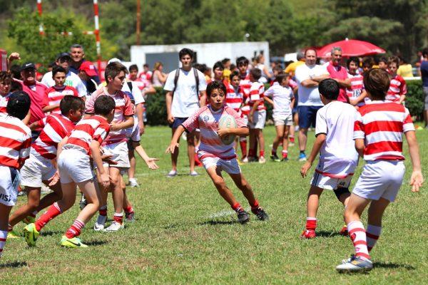 XII Encuentro Nacional de Rugby Infantil Luciano Carrara - Jockey Club Córdoba Rugby - Noviembre 2014 - 15465