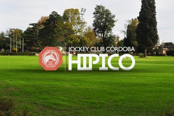 Background-Micrositio-Hípico-Jockey Club Córdoba-02-01