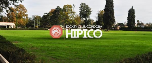 Background-Micrositio-Hípico-Jockey Club Córdoba-02-01