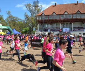 3o-maraton-contra-el-cancer-de-mama-backg