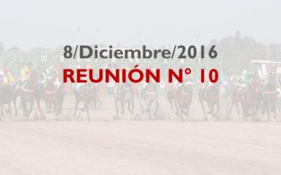hipodromo-reunion-10