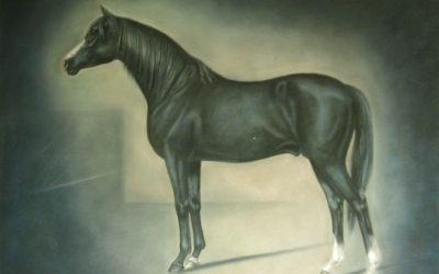 cultura-exposicion-pinturas-caballos-argentinos