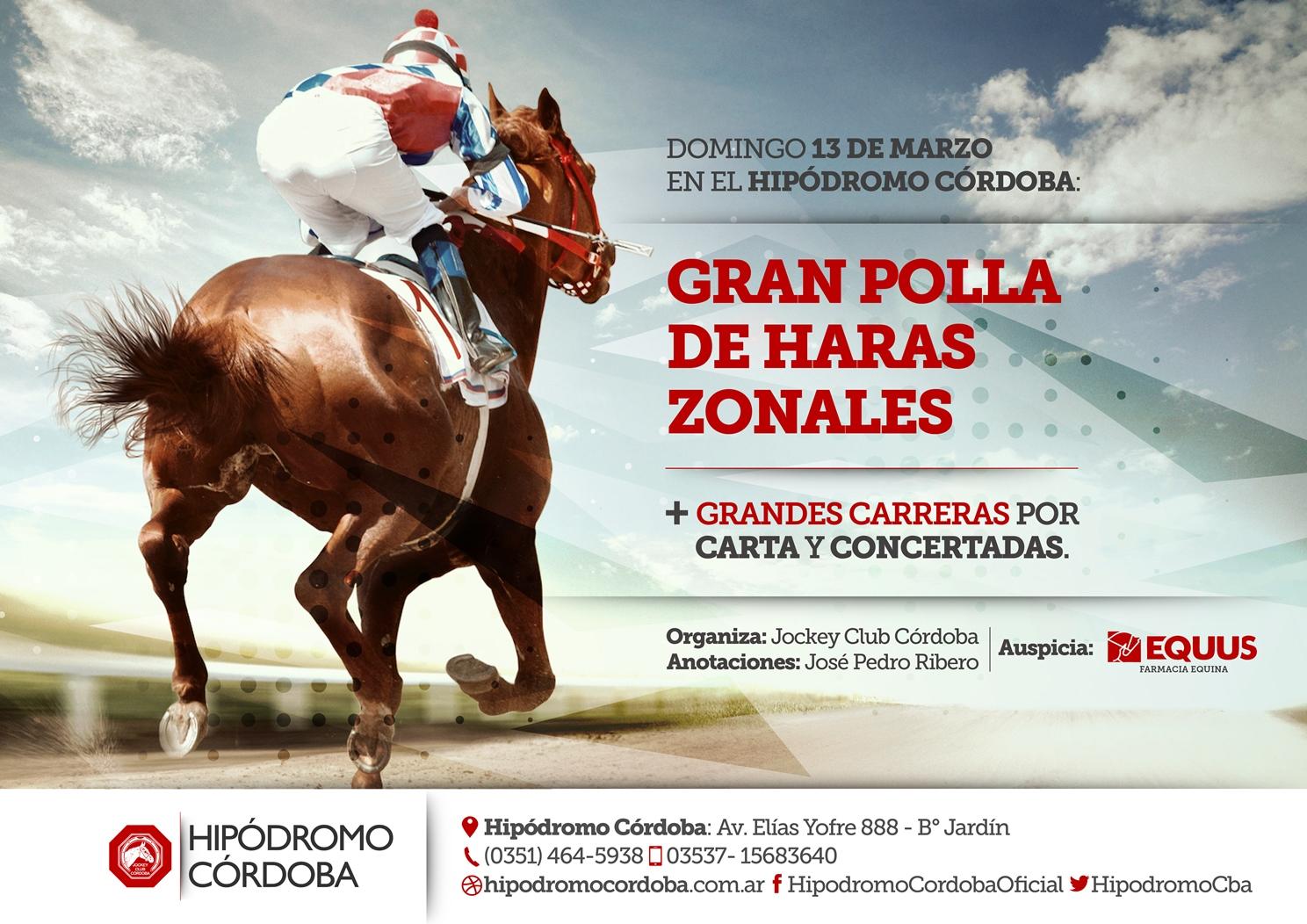 Flyer y Cartel - Grandes Carreras - Marzo 2016