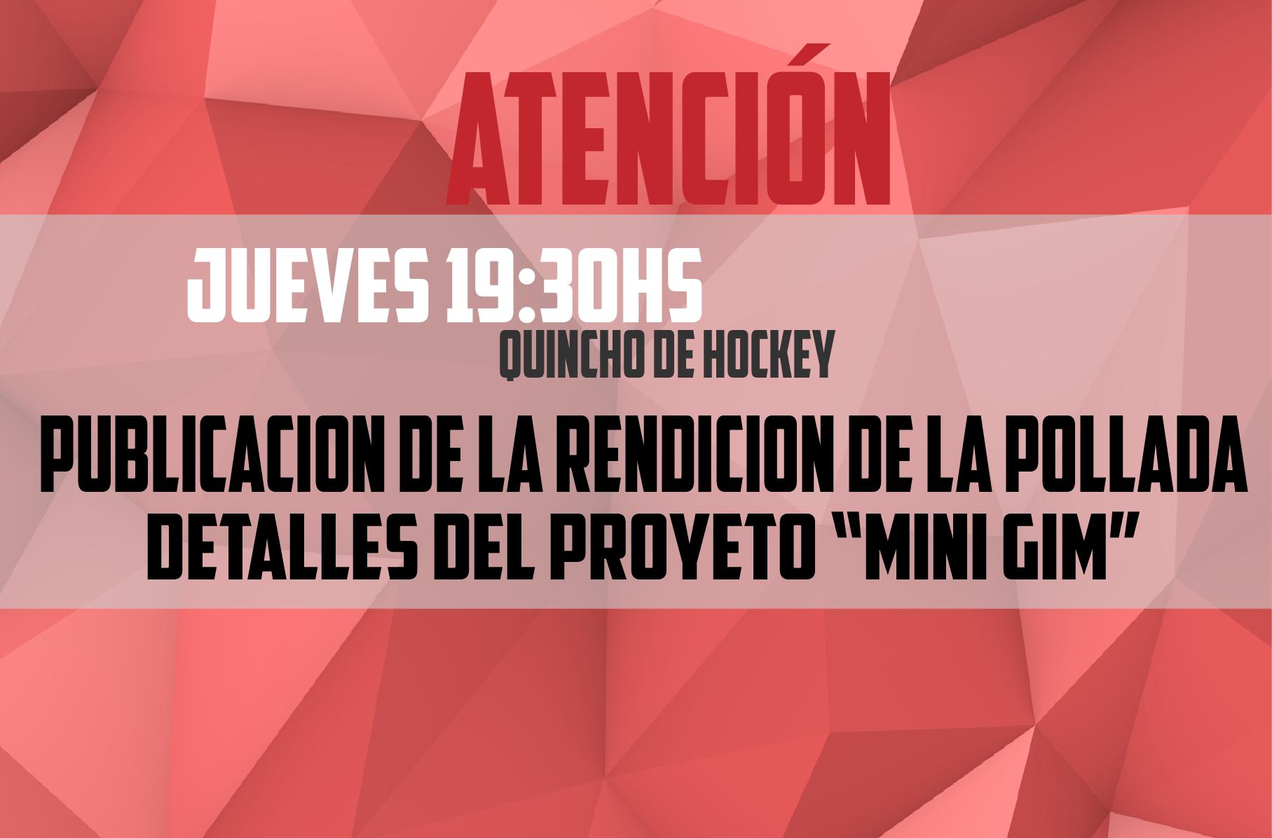 Hockey - Minigimnasio - atencion